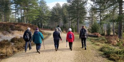 Striders Group forest walk